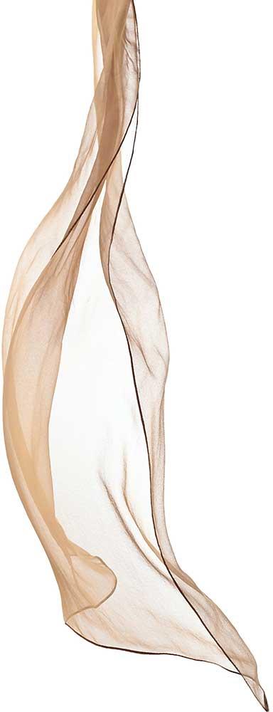 Bellevue Boudoir Transparent Fabric for Photoshoots